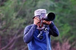 Fotografer beraksi mengabadikan burung migran